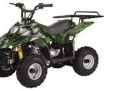 Small 110cc Youth ATVs with Rear Rack