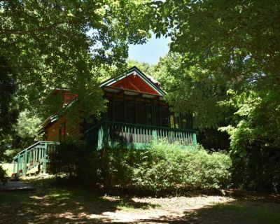Mountain Tranquility - Close to town! Pet Friendly - Helen