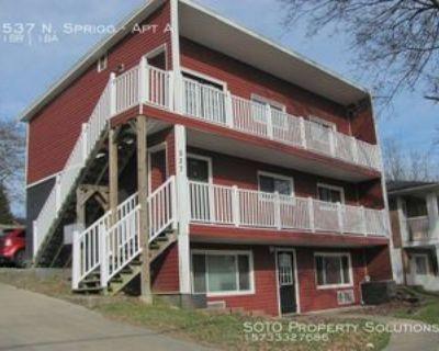 537 N Sprigg St Apt A #A, Cape Girardeau, MO 63701 1 Bedroom Apartment