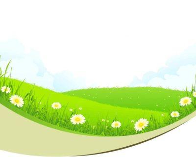 Folsom Artificial Grass