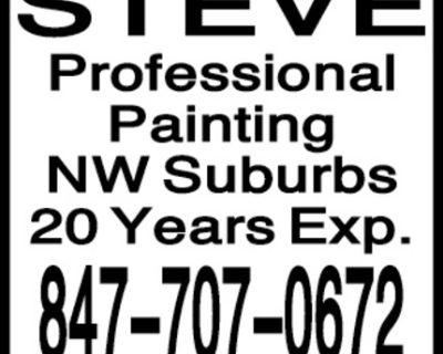 STEVE Professional Painting N...