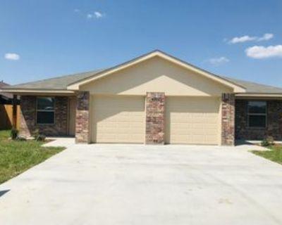 6107 Amelia Earhart Blvd #B, Killeen, TX 76543 3 Bedroom Apartment