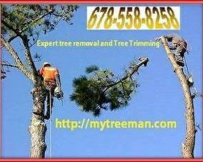 ⚡️WHITE LIGHTNING⚡️ (Marietta, Kennesaw, Roswell, Woodstock, Alpharetta) Tree Care Services 💥