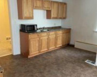 19 Mccarty Ave #1, Albany, NY 12202 1 Bedroom Apartment