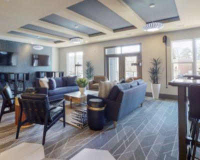 Downtown Decatur Luxury 1 Bedroom Apt, Decatur, GA