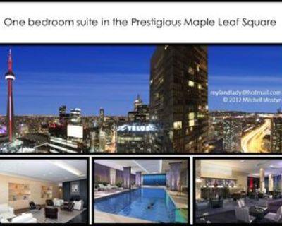 55 Bremner Boulevard #2706, Toronto, ON M5J 0A6 1 Bedroom Condo