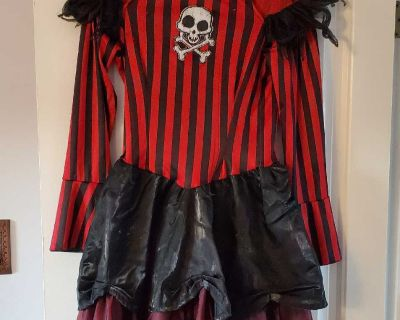 Girl's size large pirate dress - with stains