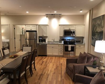 Three bedroom condo in the heart of downtown Asheville! - Downtown Asheville