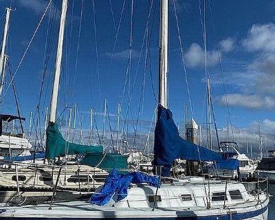 Cal Yachts 34