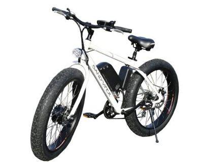 2020 SSR Motorsports Sand Viper 500W E-Bikes North Mankato, MN