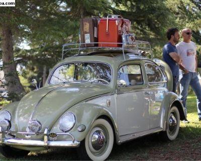 1957 Ragtop Beetle
