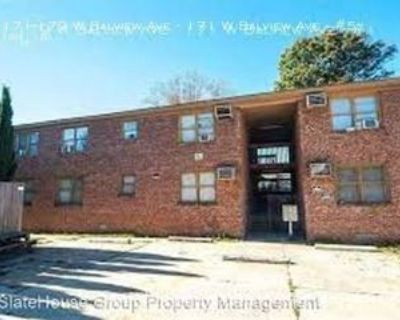 171-179 W Balview Ave - 171 W Balview Ave #5, Norfolk, VA 23503 1 Bedroom Apartment