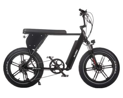 2021 Wolf Brand Scooters Revolution E-Bikes Recreation Richmond, VA