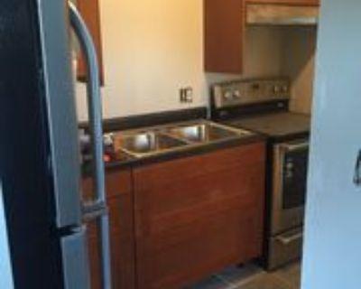 939 E Homer St - 4 #04, Milwaukee, WI 53207 1 Bedroom Apartment