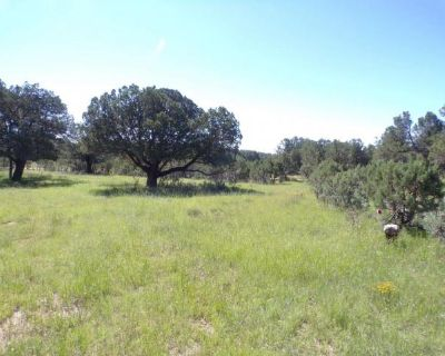 Plot For Sale In Timberon, New Mexico
