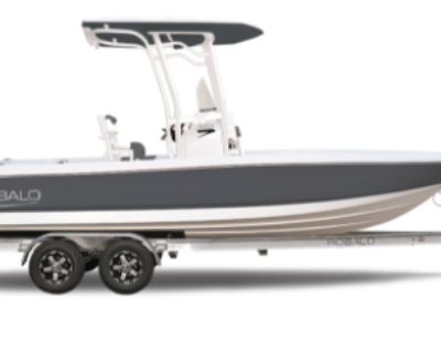 2021 Robalo Bay Boats 226 Cayman