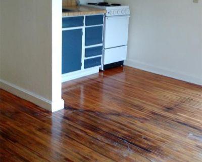 Apartment Rental - 225 Madison St