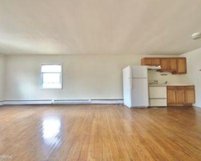 397 E Baltimore Ave #301, Media, PA 19063 1 Bedroom Apartment