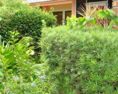 Dr. Phillips BAY LAKES Estate Sale
