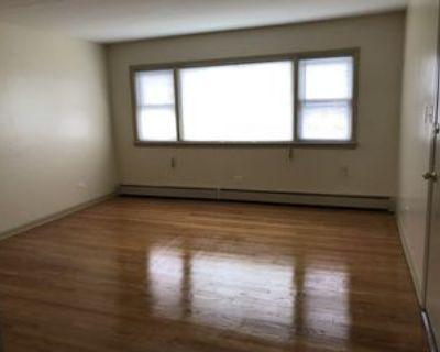 1601 South 58th Avenue #2S, Cicero, IL 60804 2 Bedroom Apartment