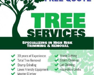 🍒 Tree Cut & Stump Removal Service's (678)558-8258 www.mytreeman.com