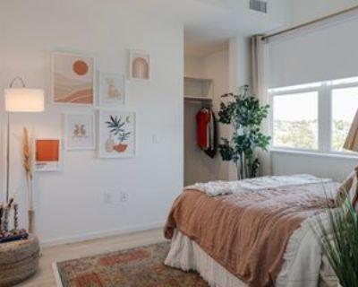 1910 Chestnut Pl #721, Denver, CO 80202 2 Bedroom Apartment