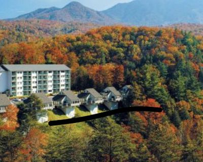 spring break at Mountainloft in Gatlinburg, TN 3/31/19-4/5/19 - Gatlinburg