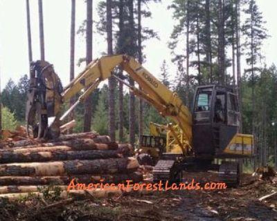 WASHINGTON LOGGERS, LOGGING Log Harvesting Land Thurston County, Olympia WA, Graham, Puyallup Duvall