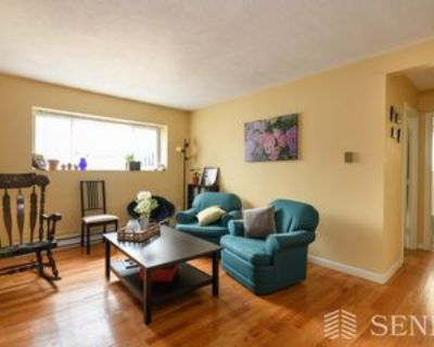 259 Summer St #4, Somerville, MA 02143 2 Bedroom Apartment