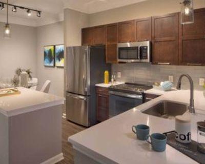 705 Town Boulevard #355, Atlanta, GA 30319 1 Bedroom Apartment