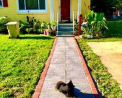 5207 Edgewood Rd, College Park, MD 20740 Studio