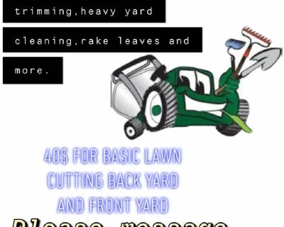 Tampa lawn services