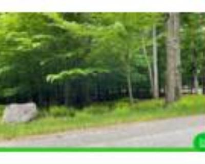 0.39 Acres for Sale in Newfoundland, PA