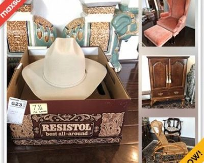 Ashburn Downsizing Online Auction - Statesboro Place
