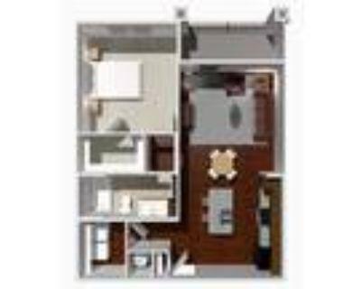 Austin Park Apartments - 1 Bed 1 Bath- Elm