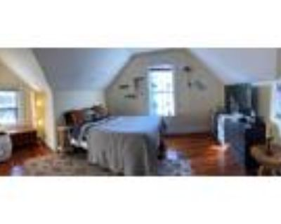 Penthouse 1 Bed Apartment Available August 1! Lofted ceilings, lots of light...