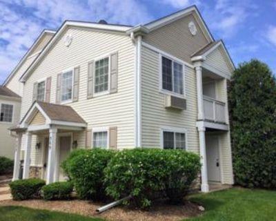 525 525 Silverstone Dr 5-13, Carpentersville, IL 60110 2 Bedroom Apartment