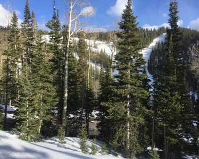 Ski-In/ski-Out At Eagle Point Ski Resort - Snowflake #12 - 1 Bedroom Condo - Beaver