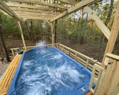 Swim Spa- Shaded Wooded Cabin 2 miles to Lake/Park Entrance use our park pass! - Birdseye
