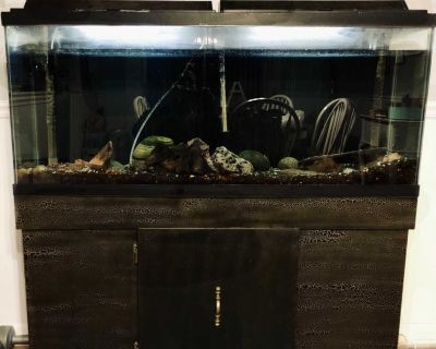 55 GALLON FISH TANK Tank Measurements: 4 ft. Length, 12.5 Wide, 21 Tall Base: 28 Tank Accessories included
