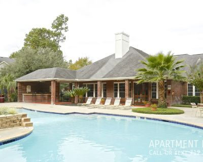 Luxury, pet friendly apartment in Pines Of Atascocita reduced rents