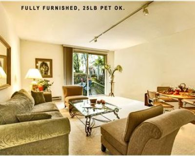 Huge Fully Furnished 1BR, Patio, Amenities,