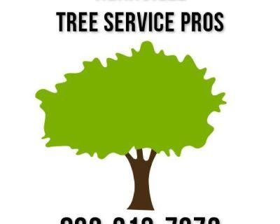 Kerrville Tree Service Pros