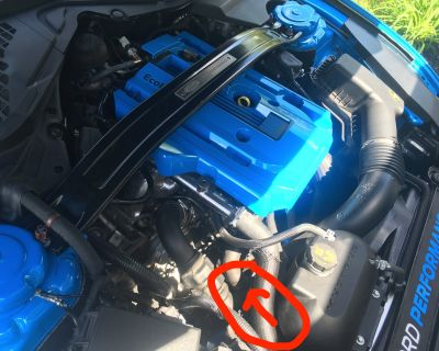 WTB mustang ecoboost clamp off the recirculation hose on mustang ecoboost, little black clamp. right by BOV on hot pipe
