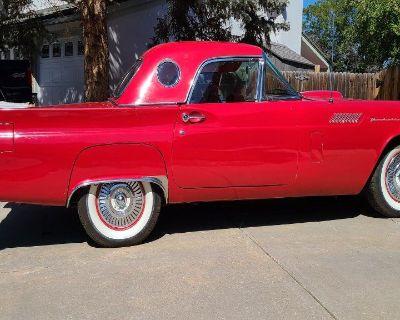 1957 Ford Thunderbird for sale in Denver