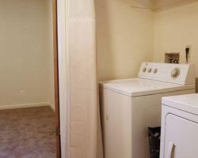 305 Ash Street - 7 #7, Chico, CA 95928 4 Bedroom House