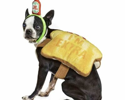 NEW with Tags! Toast of the Town! Dog Costume! Available in Med, Large & XLarge