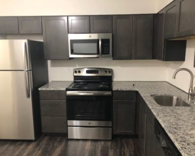 NEWLY Remodeled! 2 bedroom 1 bath apartment! On the bus line!