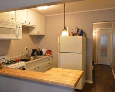906 Laurel St, Indianapolis, IN 46203 1 Bedroom Condo