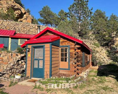 New Listing ~ Cabin on the river! - Raymond